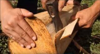 Отслоение лыковой части древесины от ствола