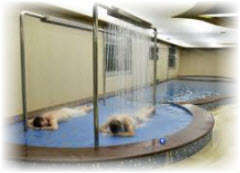 Водные процедуры в китайских банях