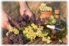 Эфирные масла для бани. Запах или аромат?