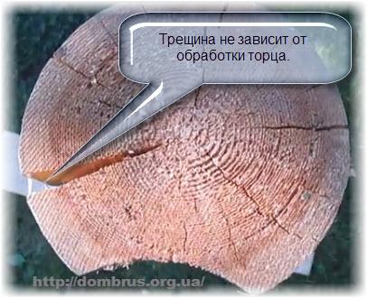 Защита и обработка торцов сруба